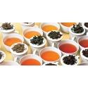 Dégustation et connaissances générales sur le thé