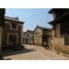 Pu'er sheng - zhenyuan BIXI Galette 100g